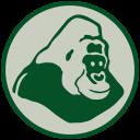 Projet Gorille Fernan-Vaz logo